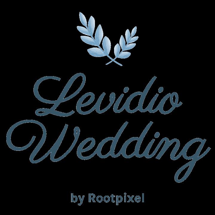 Logo Levidio Wedding